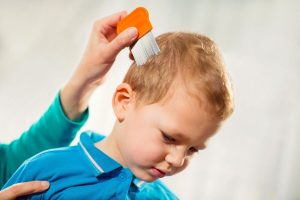 child with head lice