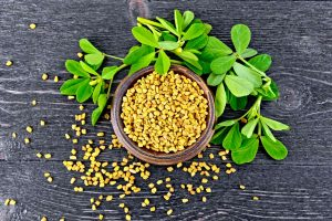 fenugreek for a natural breast enhancement