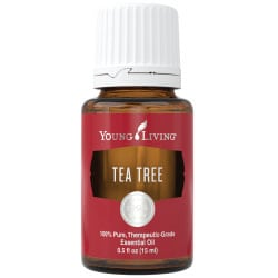 Young Living Tea tree essential oil